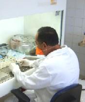 20080524011413-bromatologia.jpg