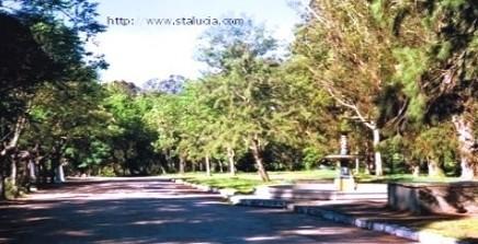 SANTA LUCIA. Comisión mutidisciplinaria santalucence recuperará 6000 metros de parque.