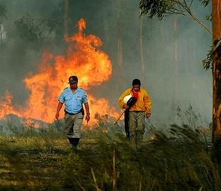 Dos incendios se sumaron a los del 2008
