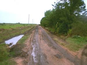 Así volvió a estar el camino Gorría-Chiazzo, luego de las máquinas de la IMC