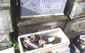 Denuncian horrores encontrados en cementerio