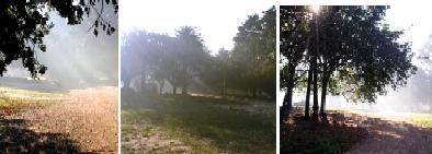 El humo argentino llegó 35 kilómetros tierra adentro en Uruguay