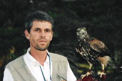 Aguilas y halcones ahuyentan otras aves de las pistas del Aeropuerto de Carrasco.