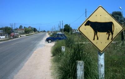 Colocarían lomos de burro entre los kilómetros 21 a 27 de la ruta 6 que atraviesa la ciudad de Toledo