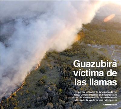 """Estos incendios pueden prevenirse """"con los Guardias Forestales que propuse"""" afirma el Edil (PN) Fernando Lúquez."""
