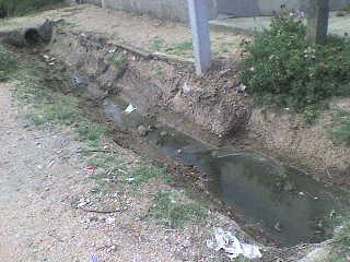 Las aguas servidas preocupan a vecinos sauceños
